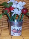 Flower Pen Tin Bucket Apple Decor